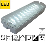 Emergency luminaire with LED 4W 3H IP65 LBVL30